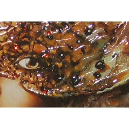 Liquid Art - Fashion and Romance Veiled Eyes II Detail