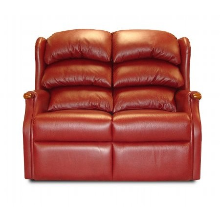 Celebrity - Westbury 2 Seater Sofa in Leather