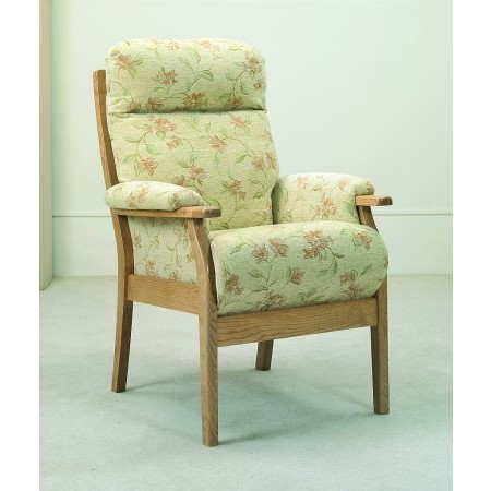 Cintique - Cheshire Armchair